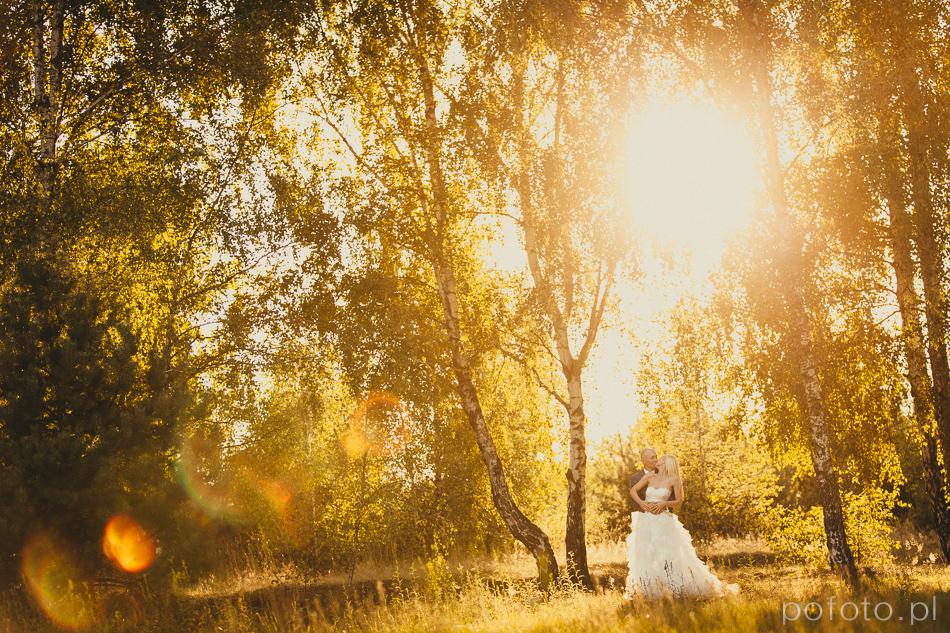 młoda para na polanie w promieniach zachodzącego słońca kolorowe zdjęcie